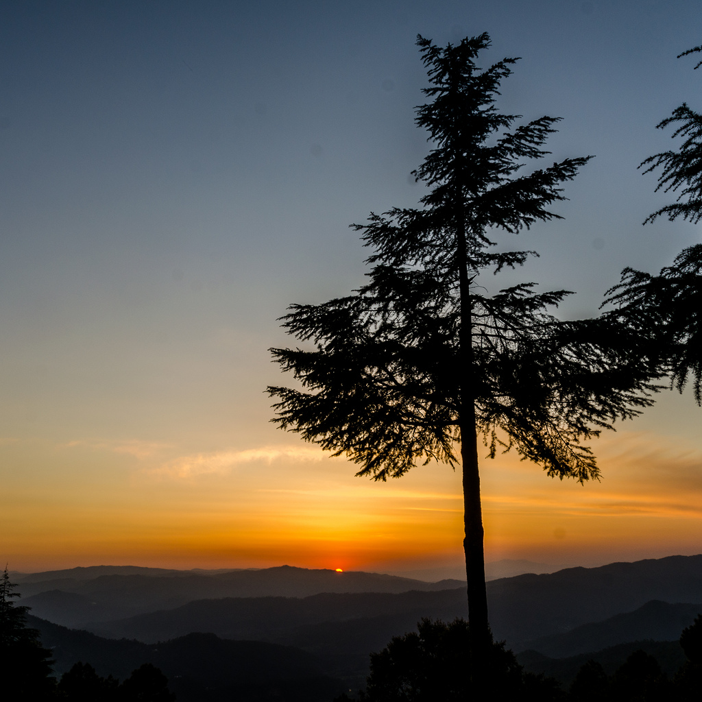 Sunset (Photo by gkrishna63)