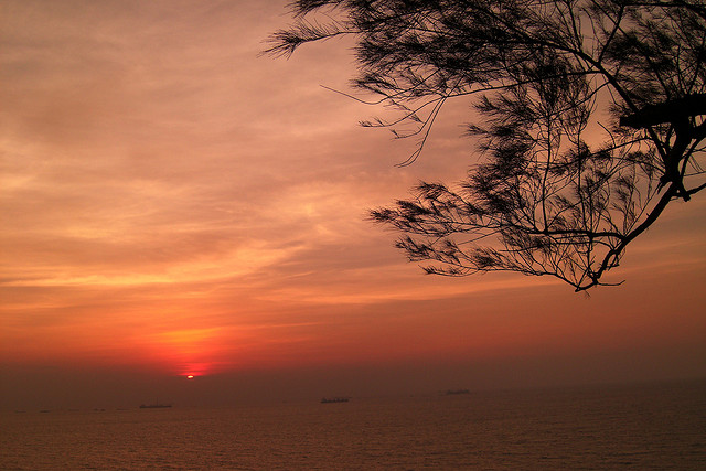 Goa (Photo by Swami)