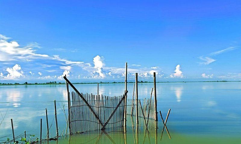 800px-Kaziranga_national_park