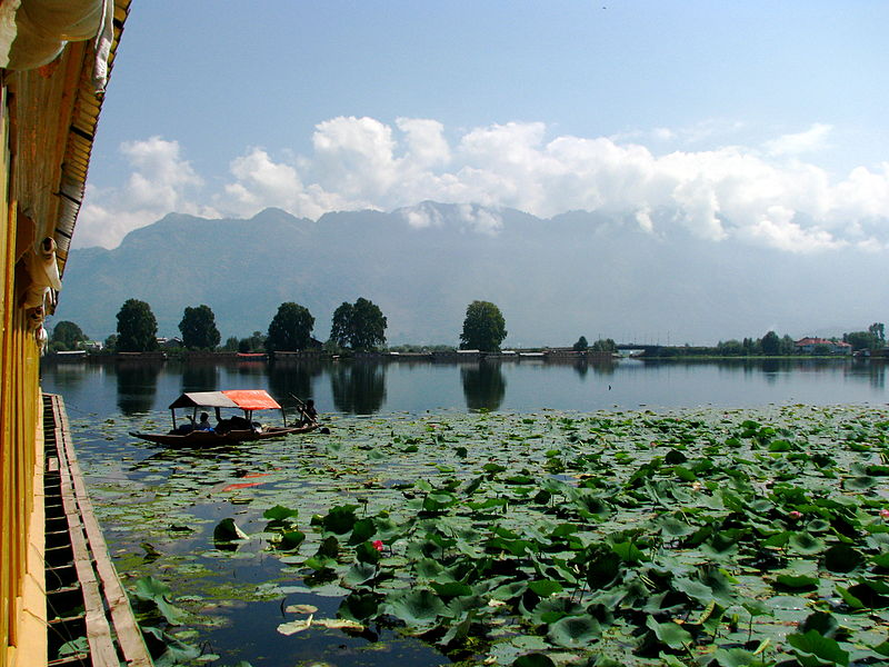 Srinagar (Photo by Russavia)