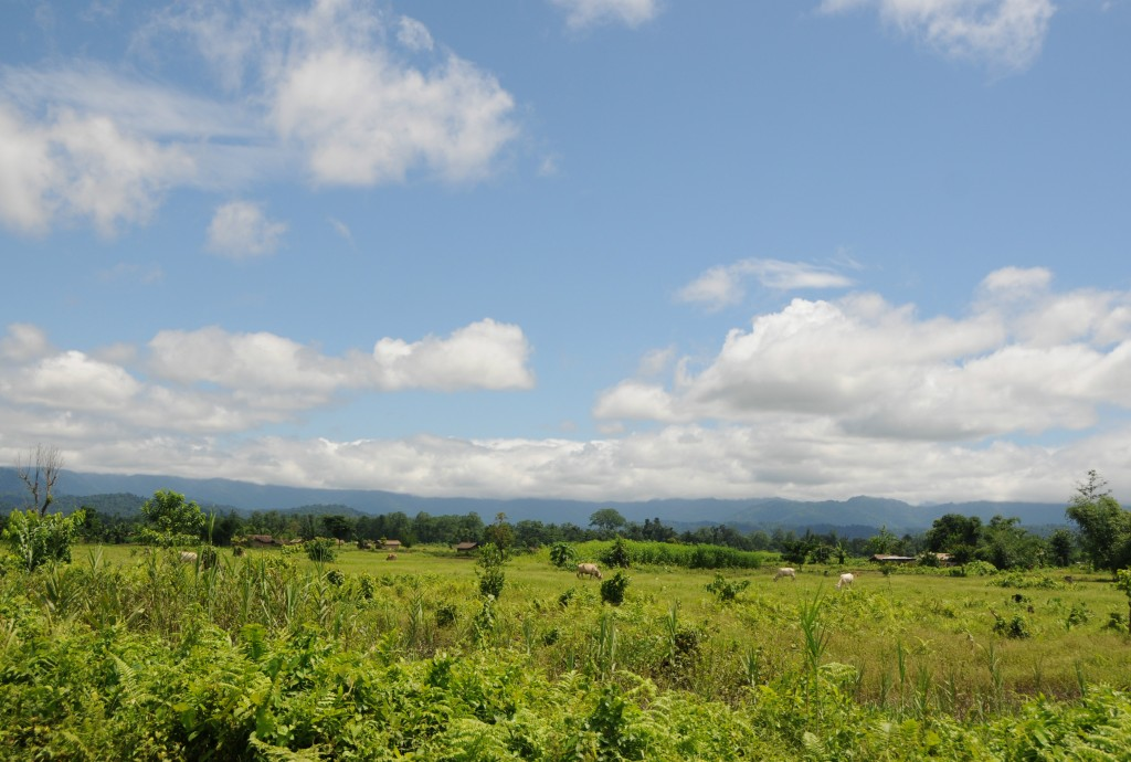 Sonitpur--home of the Orang National Park (Photo by Sharada Prasada CS)
