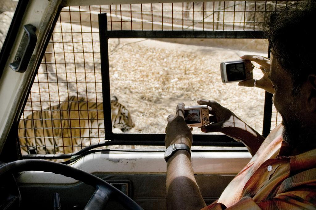 Bannerghatta Safari (Photo by Eirik Refsdal)