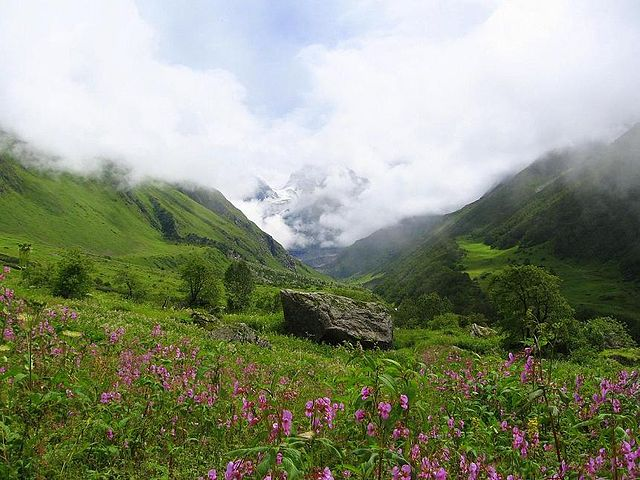 640px-Valley_of_flowers_uttaranchal_full_view