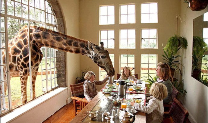 Giraffe Manor, Kenya 2
