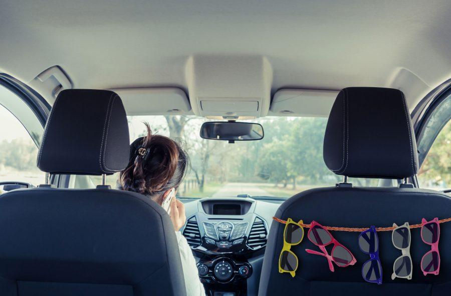 Shades In car