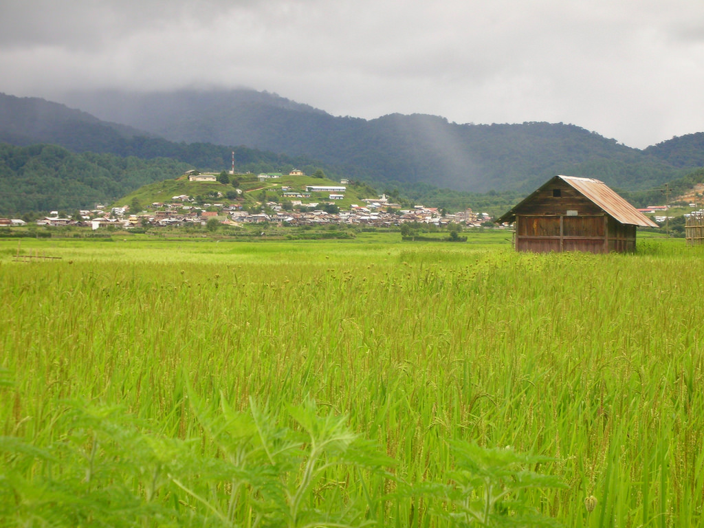 ziro-images-photos-542a789ae4b0b2f2242ac329