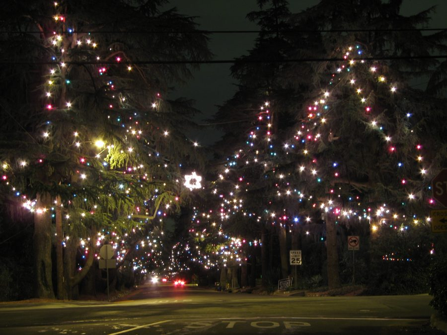 christmas_tree_lane
