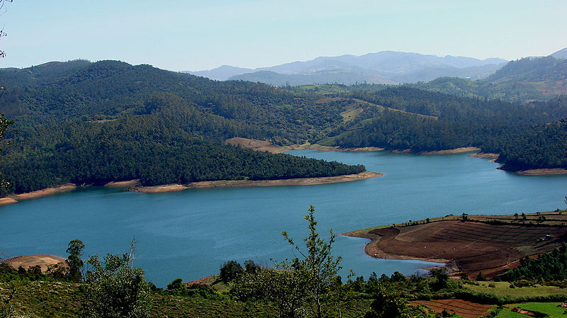 Emerald Lake near Ooty (Photo by http://www.flickr.com/photos/sankaracs/