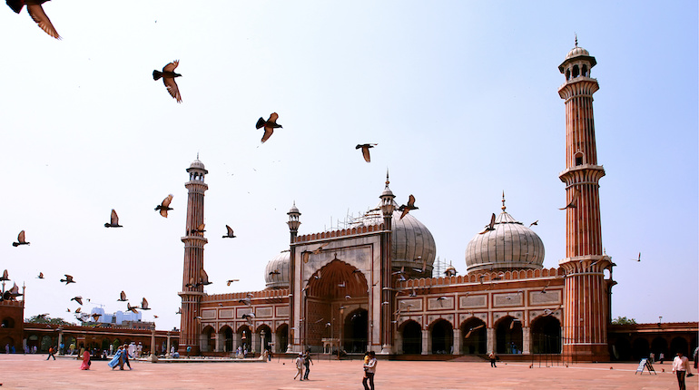 Birds fly over the courtyard of the Jama Masjid in Delhi