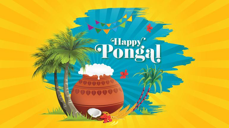 pongal blog