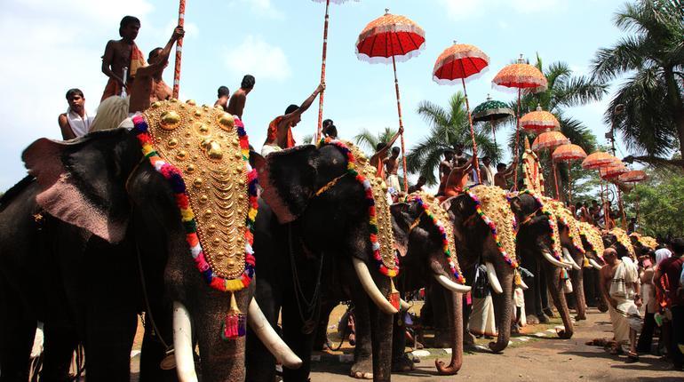 thrissur pooram blog image final
