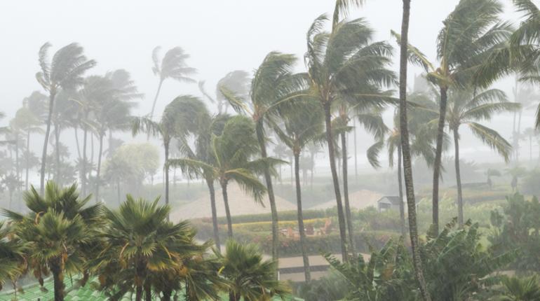 new cyclone