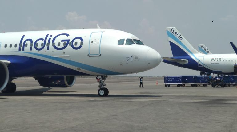 indigo new flights
