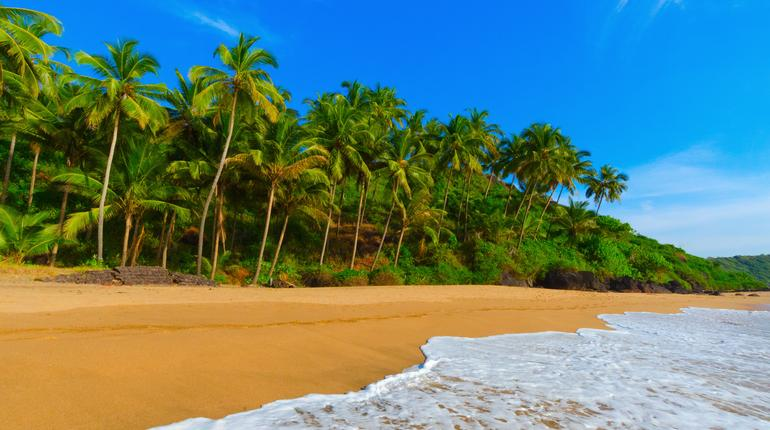 beautiful landscape beach in Goa in India