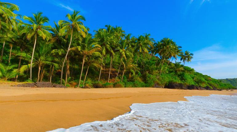 beautiful landscape beach in Goa in India