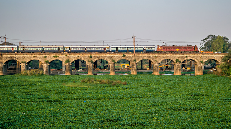 A passenger train crossing water hyacinth filled bed of Mula river in Dapodi.