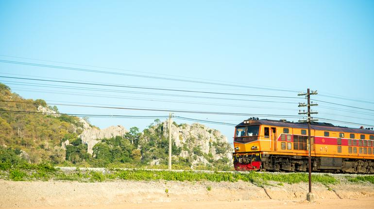 Local train passes through the yellow field.