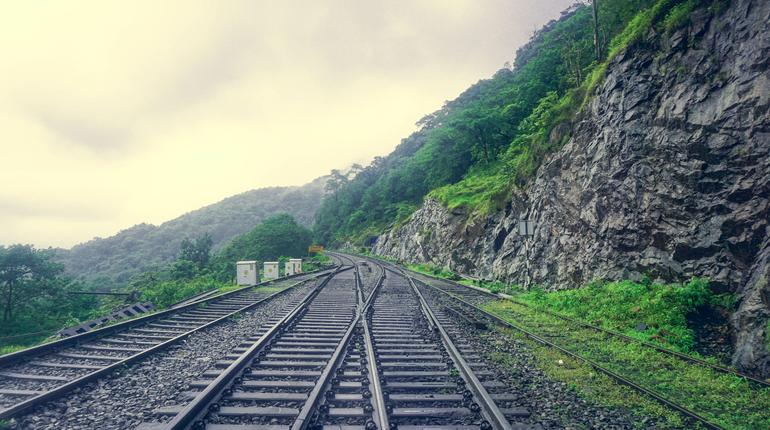 Railway in the Indian jungle