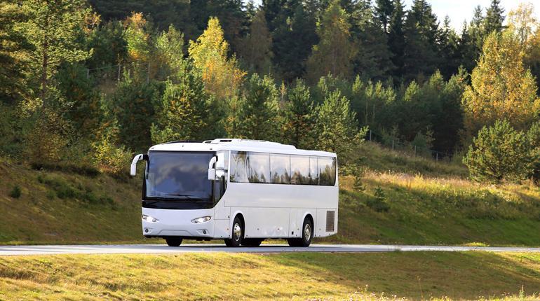 Bus trips under 500