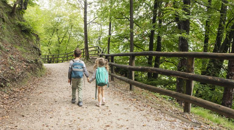 Little tourists boy and girl holding hands go to family camping along a gravel forest road in the Alps mountains. Children with backpacks go on a hiking trail.